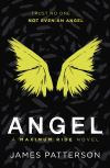 Angel / James Patterson.